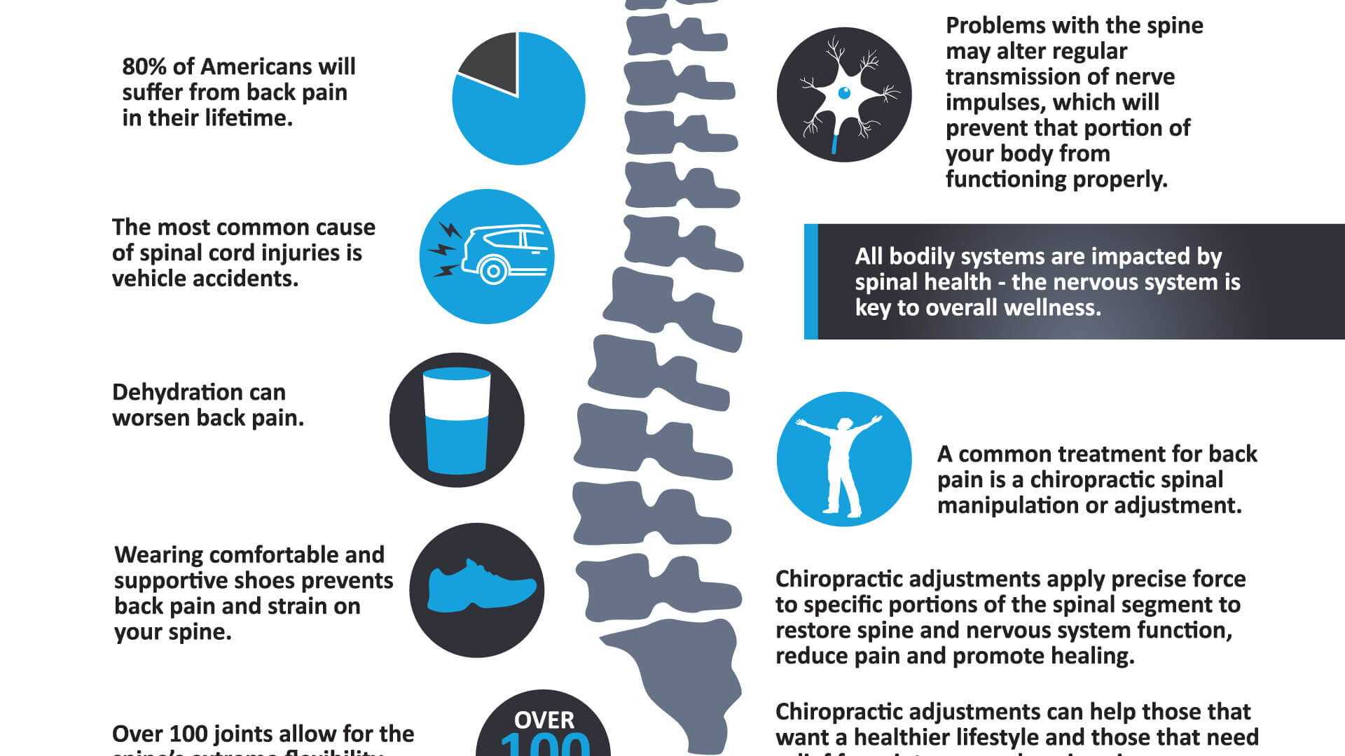 Your Spine is in Good Hands: Infographic